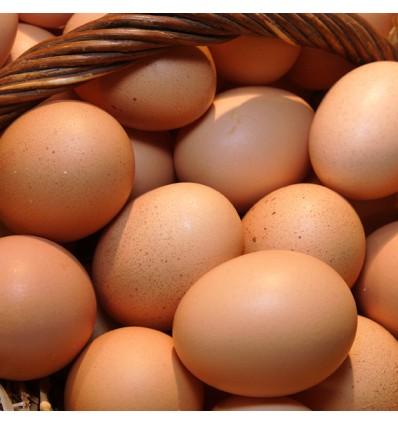 Huevos Rosados de Gallina