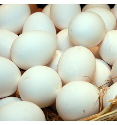 Huevos Blancos de Gallina
