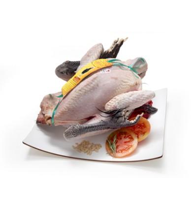 Pollo Payés Besàvia (Penedés)