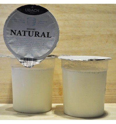 Yogurt Natural Artesanal