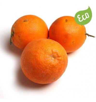 Naranja Zumo Ecológica