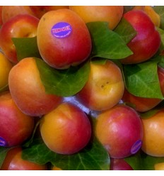 Albaricoque Naranja