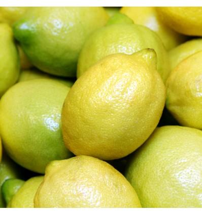 Limones Verna