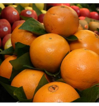 Naranjas Sanahuja Extra