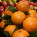 Naranjas Extra