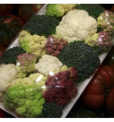 Brócolis Variados