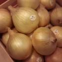 Cebolla Dulce de Fuentes