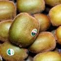 Kiwi Verde Extra