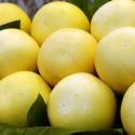 Pomelo Amarillo